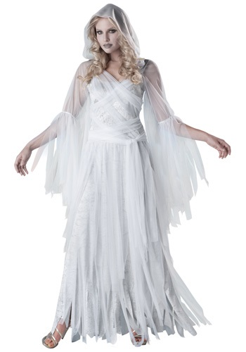 Haunting Beauty Womens Costume