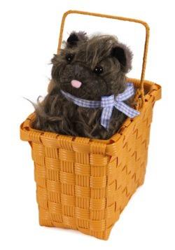 Deluxe Toto Basket