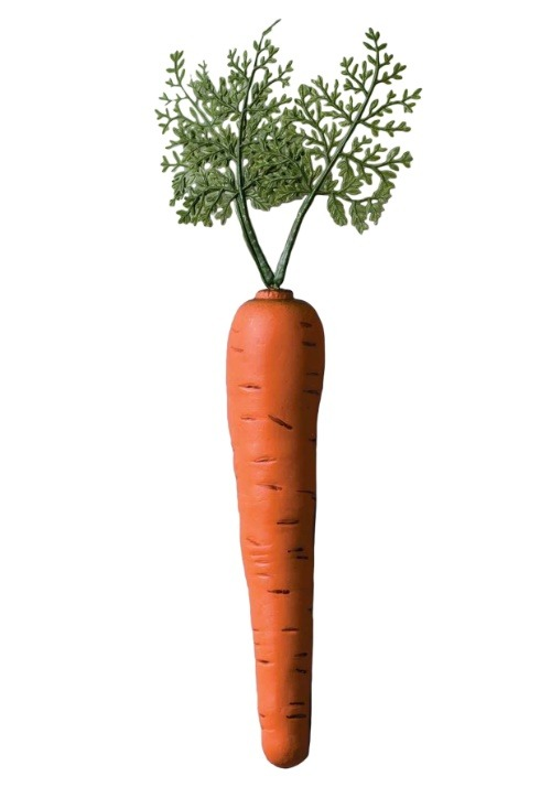 Bunny Carrot Accessory For Easter