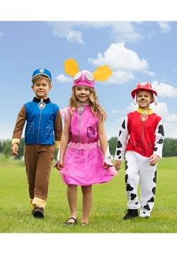 Paw Patrol: Skye Child Costume Alt 1