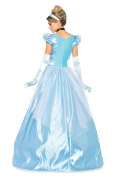 Classic Cinderella Full Length Gown Costume back