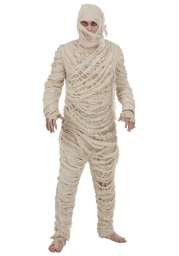 Mummy Men's Costume