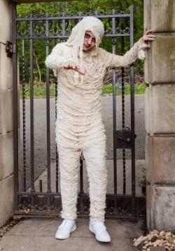 Plus Size Men's Mummy Costume 2