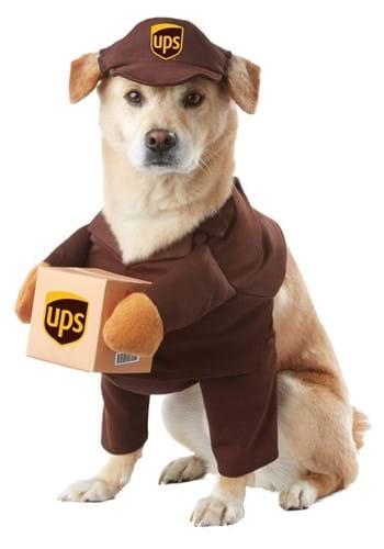 Dog UPS Costume