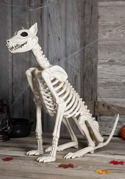 Spike the Dog Skeleton