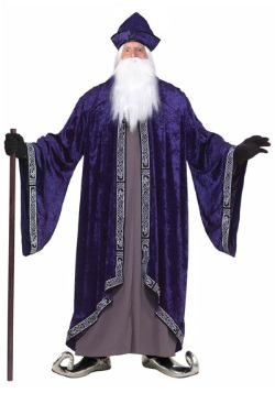 Plus Size Royal Wizard Costume For Adults