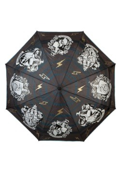 Harry Potter Water Reactive Umbrella