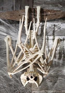36'' Nocturnal Bat Skeleton UPD 2