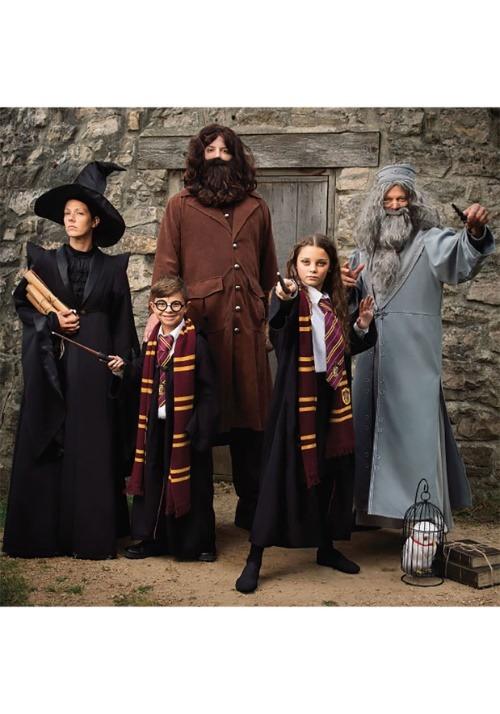Adult Deluxe Dumbledore Costume Alt 9