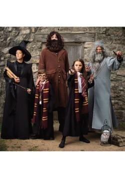 Deluxe Harry Potter Hagrid Plus Size Mens Costume