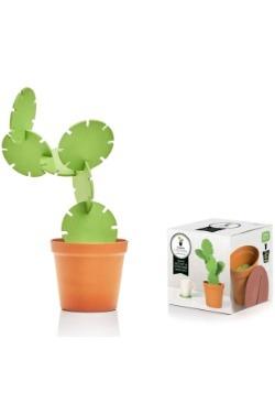 Cactus Coasters Alt2