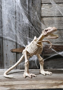 "16"" T-Rex Skeleton Decoration"
