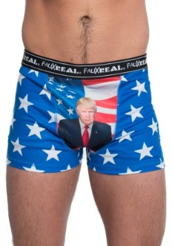 Trump All Over Boxers