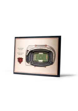 Chicago Bears 5 Layer Stadiumviews 3D Wall Art