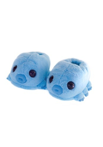 Water Bear Slippers