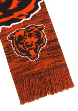 Chicago Bears Wordmark Big Logo Colorblend Scarf Alt2