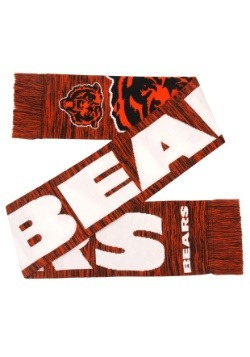 Chicago Bears Wordmark Big Logo Colorblend Scarf Alt3