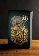 Hufflepuff House Harry Potter Luminart Alt2