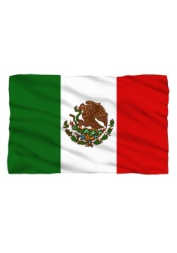 Mexico Flag Lightweight Fleece Blanket