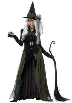 Adult Cool Witch Costume