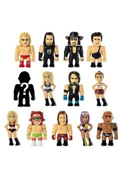 Kidrobot WWE Vinyl Mini Series Blindbox Alt 1