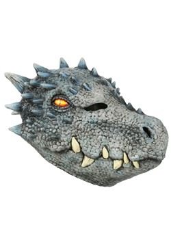 Winter Dragon Mask-1