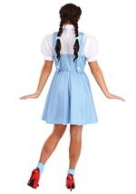 Teen Dorothy Costume Alt 7