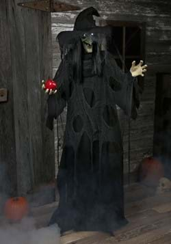 Animated Standing Witch (LL4-900325DZ-AD050F)-1