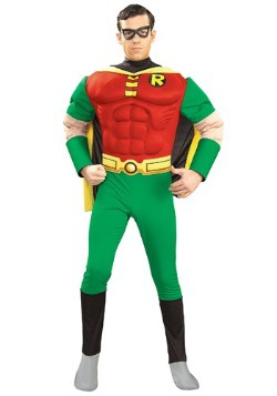 Adult Teen Titans Robin Costume